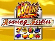 Играть онлайн в игровом заведении в Roaring Forties