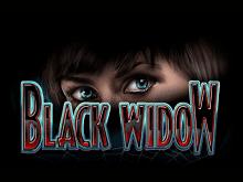 Бонусы в игровом зале Вулкан в слоте Black Widow